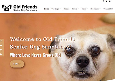 Old Friends Senior Dog Sanctuary Mt Juliet Website Design